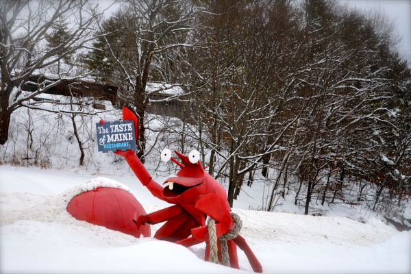 Taste of Maine, Roadside Attractions, Woolwich